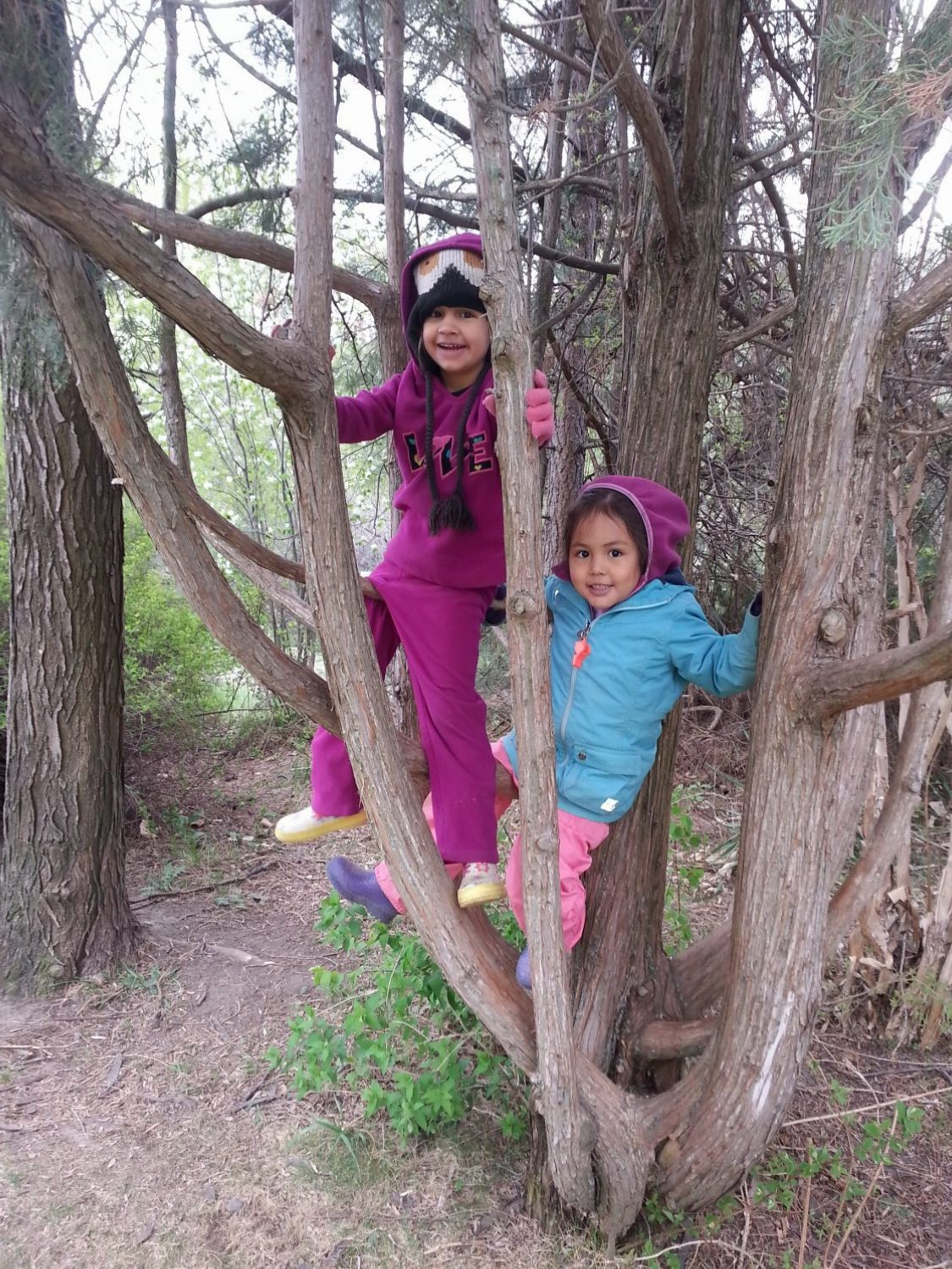 Shoots (Outdoor Kindergarten Program)