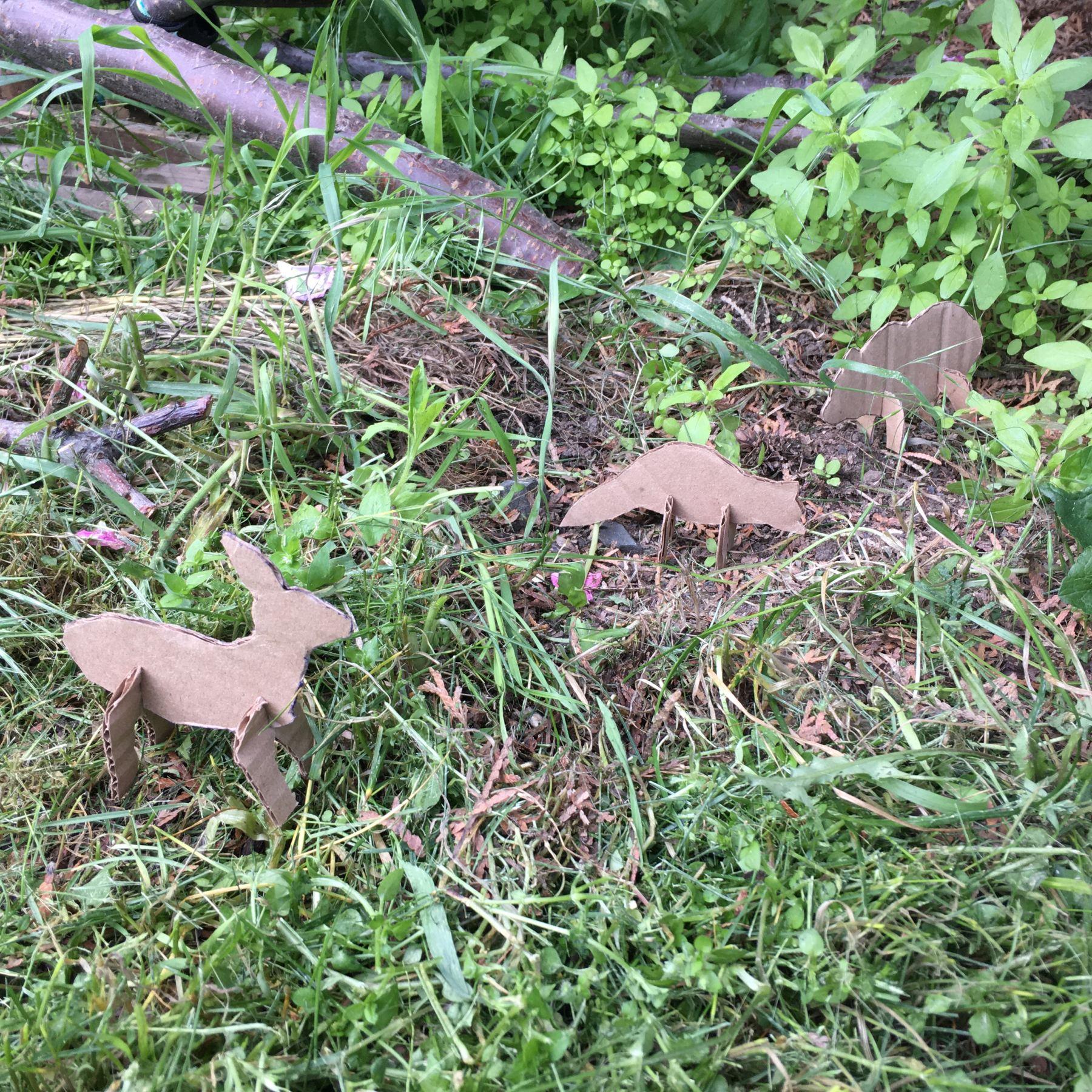 Cardboard Forest Animals