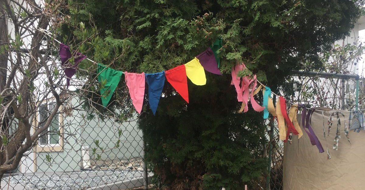 Backyard Party Decorations