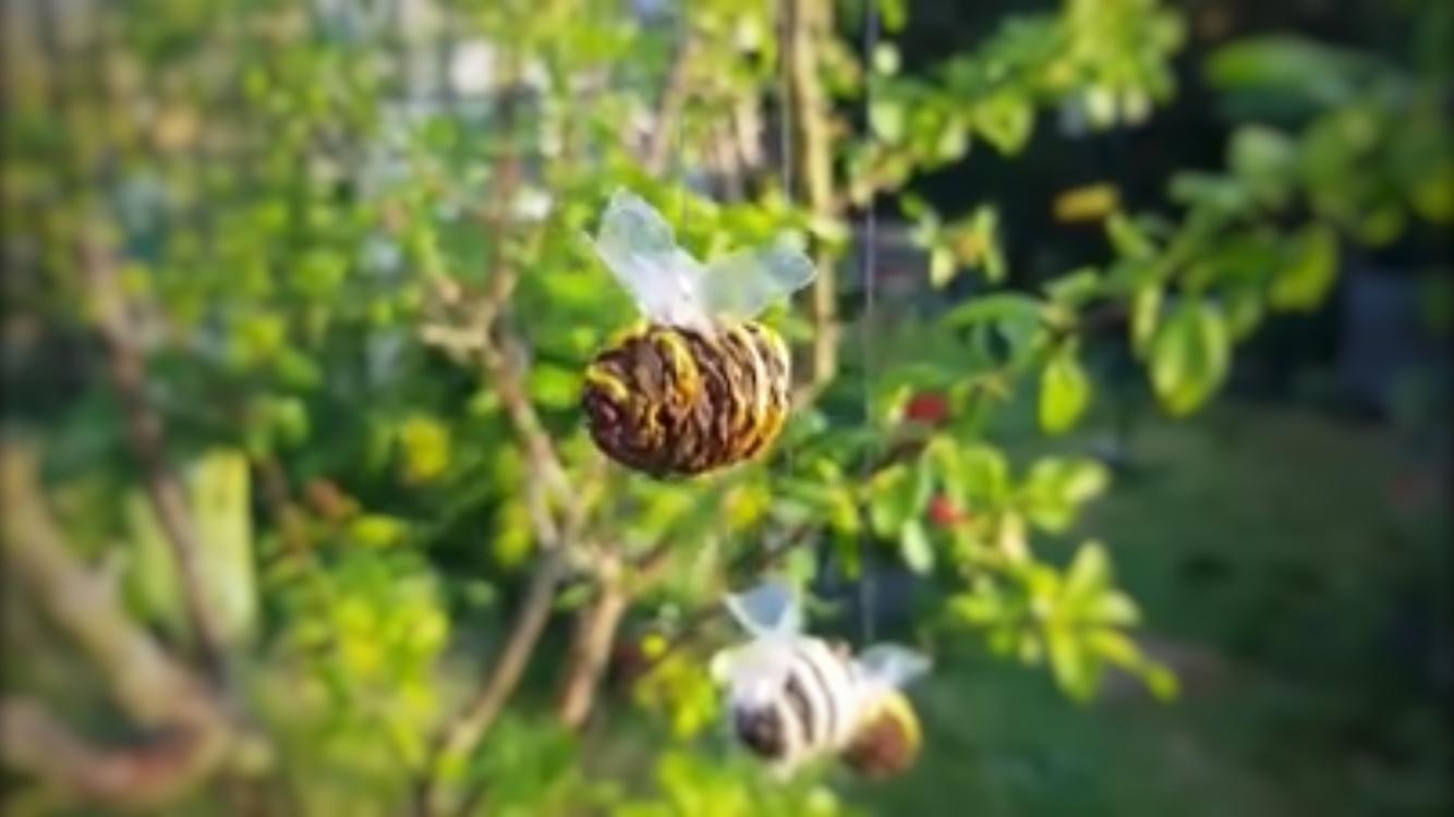 Backyard Bumble Bee